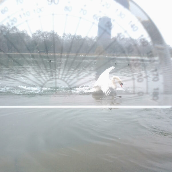 Bird Aviaonics
